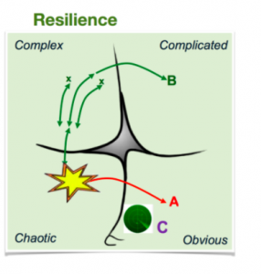 Resiliencia | Fuente: Cynefin Framework – Mining Differently